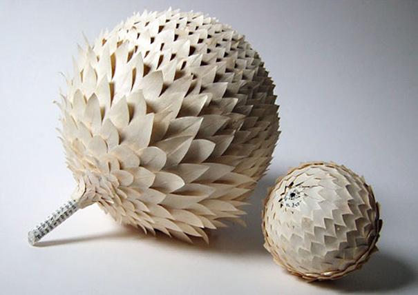 Image Source: treehugger.com