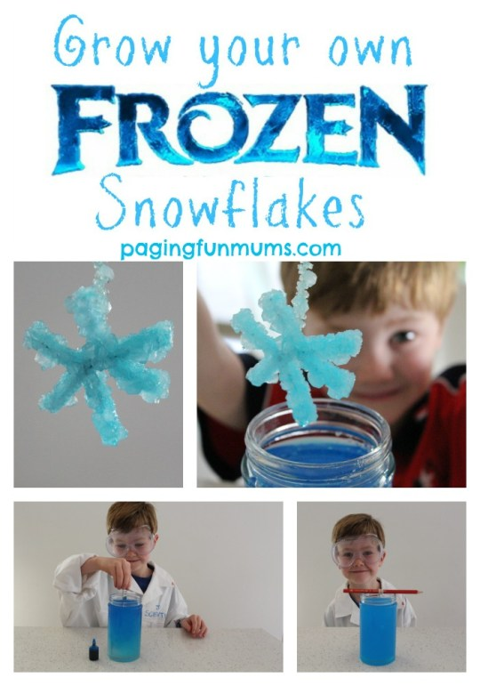 How-to-grow-your-own-frozen-snowflakes
