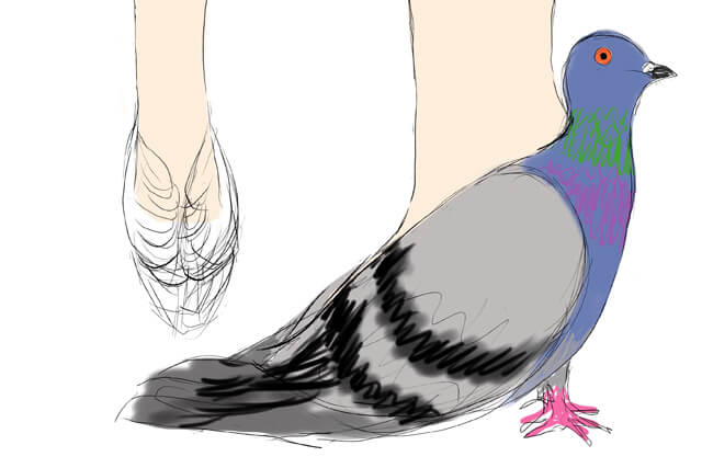 pigeon-shoes-make-yourself-1
